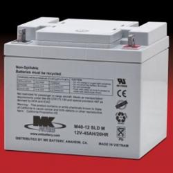 1 Pair MK SLA 12 Volt 45 Amp/Hour Batteries